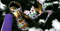 Un germoglio di colore nel candore del ghiaccio, una sferzata di profumo fiorito nel bianco della neve piu' immacolata. L'anticipo...