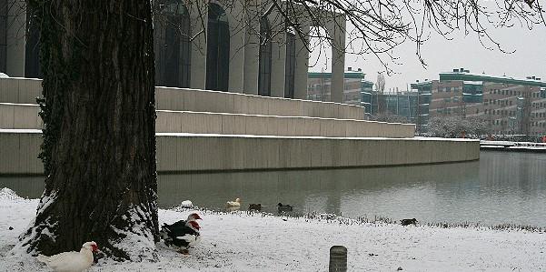 Neve a Milano 2 Segrate Lago