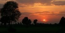 La cultura agricola del nord-est italiano non mi appartiene per tradizione, ma mi affascina. Per molti anni, tre volte all'anno,...