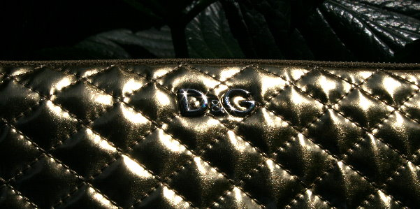 d&g tablet slave