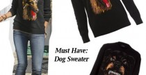 Must Have// Dog sweater