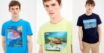 Springfield lancia le magliette amiche dell'Oceano