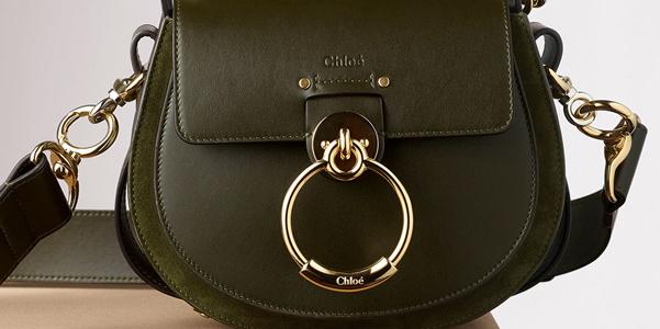 080529e671 Si chiama Tess la nuova camera bag di casa Chloè proposta per l'autunno  inverno 2018-19 con uno stile essenziale, moderno e ricercato.